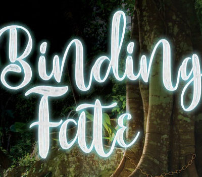 Binding Fate | The Book Hook and What Inspired it